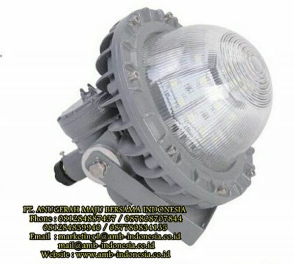 Explosion Proof Qinsun BLD230 LED Low-Mid Bay