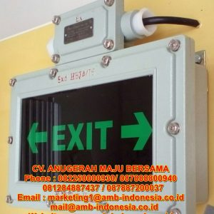QINSUN BZD310 LED Emergency Exit Signal Lighting