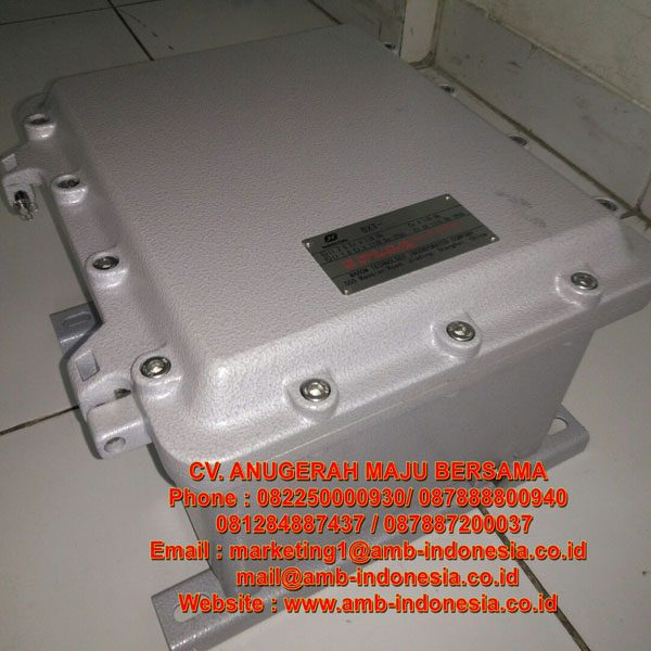 Panel Box Explosion Proof Zone 1 Class 1 Div 1 Warom BXT Series