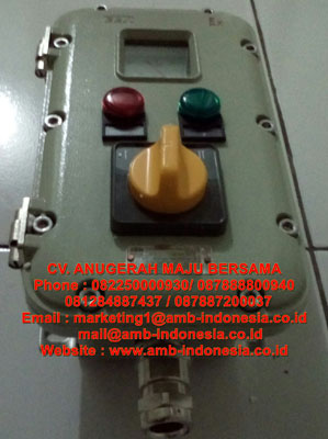 Explosion proof Control Station