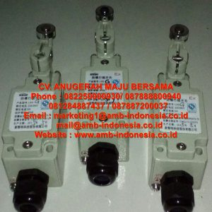 LX5 Explosion Proof Limit Switch(ⅡC)