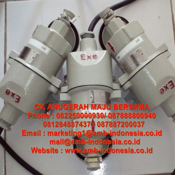 AC Series Explosion Proof Plug and Socket