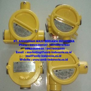 Junction Box Explosion Proof