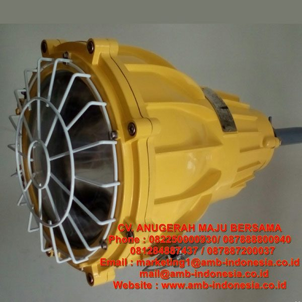 Lampu Tembak Explosion Proof - Floodlight Explosion Proof Warom BAT53 HRLM BFd