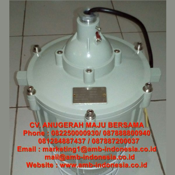 HRLM CCd92 Series Ex-Proof Pendant