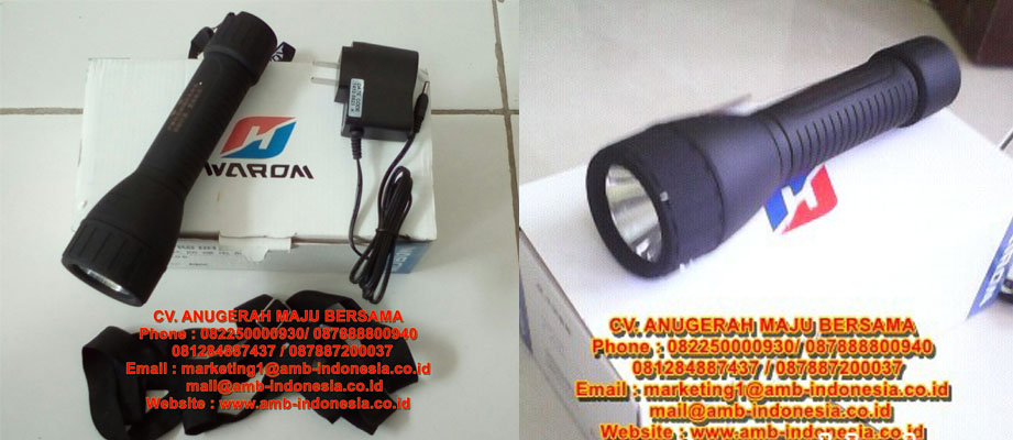 Warom BAD 206 LED Torch Lamp Lighting
