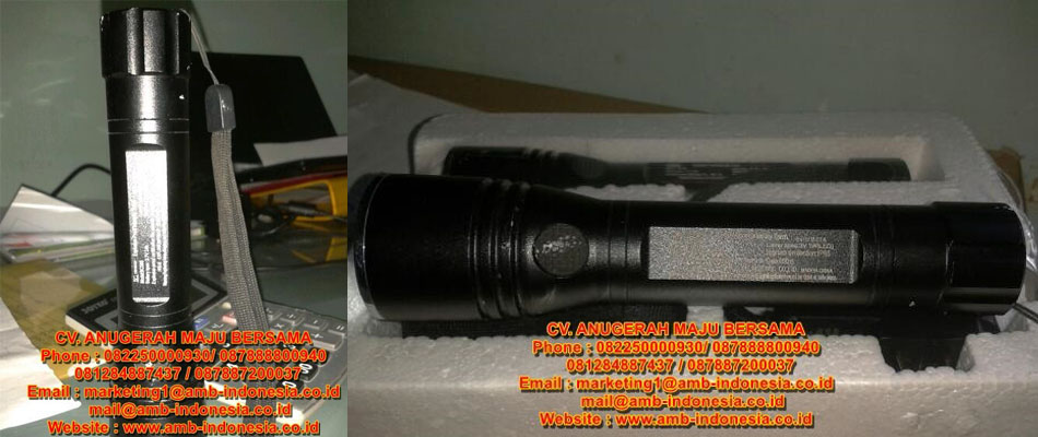 HRLM BCS96 LED Ex-Proof Torchlight