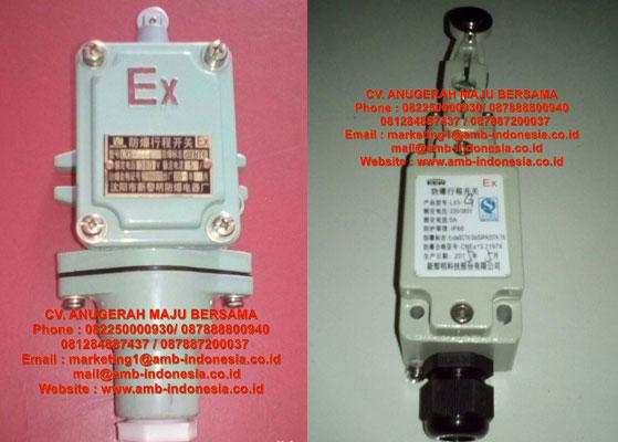 LX5 Explosion Proof Limit Switch(ⅡC)