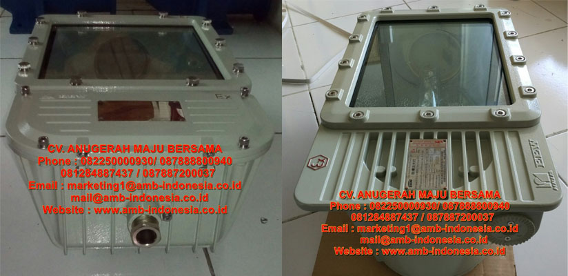 Lampu Sorot Explosion Proof HRLM BFd Series Ex-Proof Floodlight