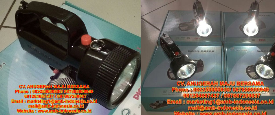 QINSUN ELM620 LED Hand Lamp Lighting