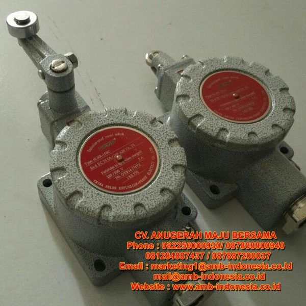 Limit Switch Explosion Proof