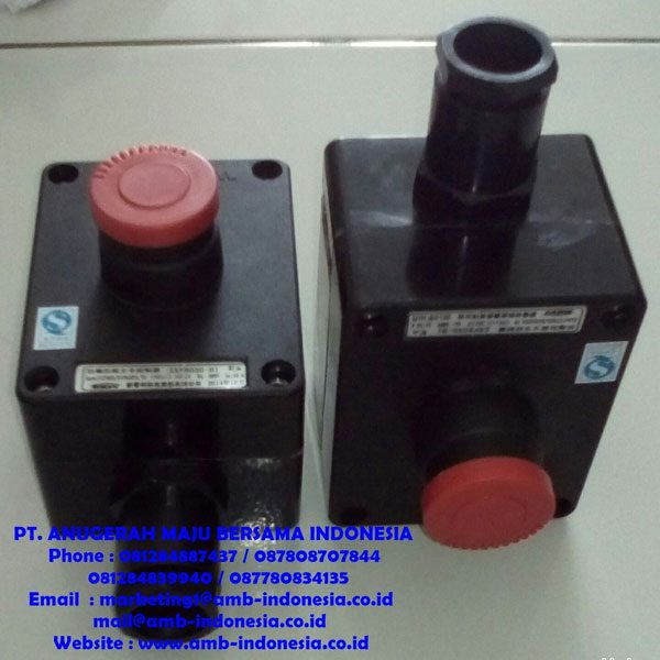 Push Buttom Explosion Proof Control Unit GRP Polyester