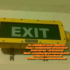 Lampu Led Emergency Exit Lamp Explosion Proof Warom BAYD Emergency Exit Signal Lighting