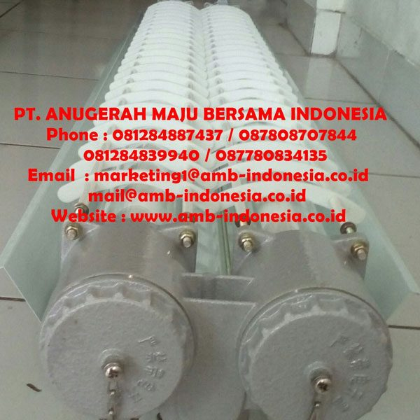 BAY52 Series Explosion-proof light Fittings for Fluorescent Lamp Jakarta Indonesia